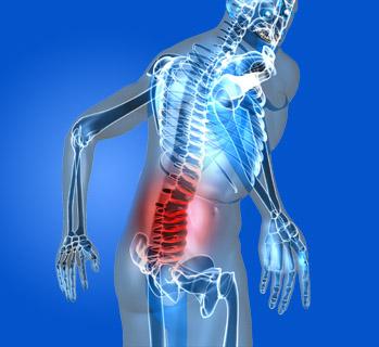 Visite Osteopatiche   Fisiomakbi.it